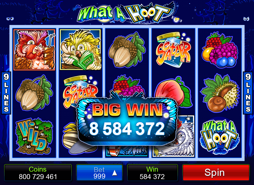 What A Hoot Mobile Pokies Big Win